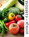 夏野菜 41869348
