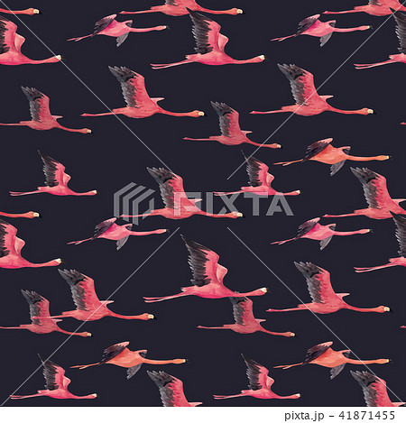 Watercolor flamingo vector pattern 41871455