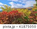紅葉 山 安達太良山の写真 41875050