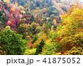 渓谷 照葉峡 秋の写真 41875052