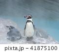 ペンギン 41875100