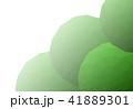 ポリゴン 41889301