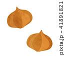 玉ねぎ イラスト 41891821