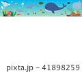 海の生き物2 41898259