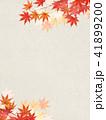 背景 和柄 紅葉のイラスト 41899200