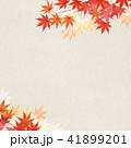 背景 和柄 紅葉のイラスト 41899201