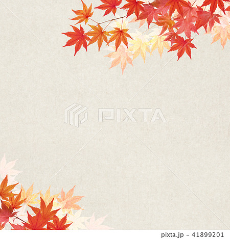 和-背景-秋-紅葉 41899201