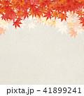 背景 和柄 紅葉のイラスト 41899241