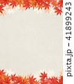 背景 和柄 紅葉のイラスト 41899243