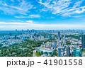 東京都 都会 都市の写真 41901558