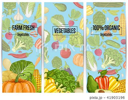 Organic vegetable farming flyers set 41903196