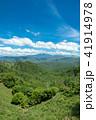 眺め 初夏 新緑の写真 41914978