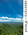 眺め 初夏 新緑の写真 41914980
