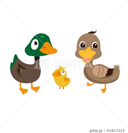 duck character vector design 41917222