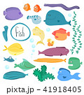 魚 水中 アクアリウムのイラスト 41918405