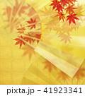 金箔 和柄 扇子のイラスト 41923341