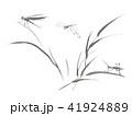 トンボキリギリス水墨画 41924889