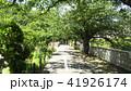 緑の小道 41926174