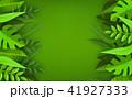 リーフ 植物 樹木のイラスト 41927333