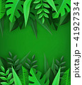リーフ 植物 樹木のイラスト 41927334