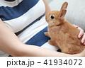 うさぎ (ウサギ ペット 兎 生物 動物 ネザーランドドワーフ コピースペース 年賀状素材 新年) 41934072