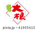 大根 水彩画 野菜のイラスト 41935415