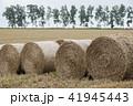 牧草ロール 41945443