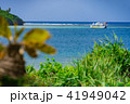 沖縄 海 夏の写真 41949042