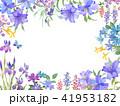 花 水彩画 コピースペースのイラスト 41953182