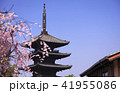 3月 八坂の塔-京都東山の春- 41955086