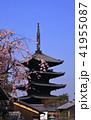 3月 八坂の塔-京都東山の春- 41955087