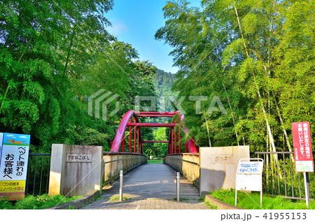 <あいかわ公園> 風の子橋 41955153