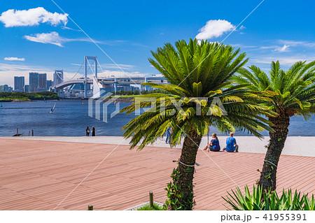 《東京都》夏のお台場・海浜公園 41955391