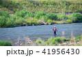 鮎の友釣り 41956430