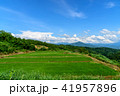 田んぼ 田園 青空の写真 41957896