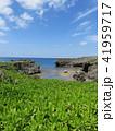 空 海 海岸の写真 41959717