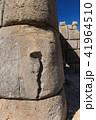 サクサイワマン遺跡の蛇の文様 41964510