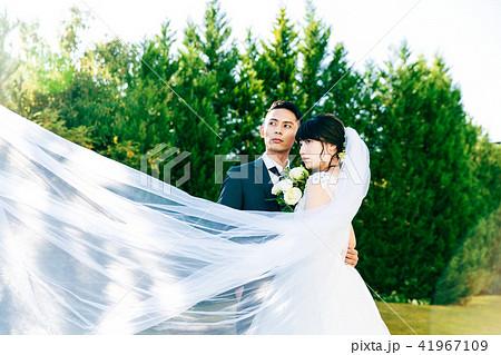 フォトウエディング 結婚 新郎新婦 41967109