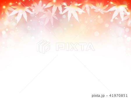 赤色背景秋色紅葉 41970851