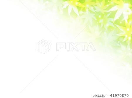 黄緑色背景秋色紅葉 41970870