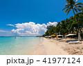 フィリピン・ボラカイ島のビーチをのんびり散策 41977124