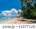 フィリピン・ボラカイ島のビーチで生い茂る木々 41977126