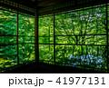 京都・瑠璃光院の春の特別参観 41977131
