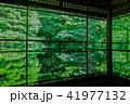 京都・瑠璃光院の春の特別参観(広角) 41977132