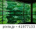 京都・瑠璃光院の春の特別参観(落ち着いた新緑) 41977133