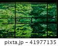 京都・瑠璃光院の春の特別参観(テーブルに反射する新緑) 41977135