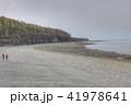 Shoreline Bay of Fundy, Nova Scotia, huge tides 41978641