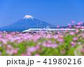 富士山 新幹線 静岡の写真 41980216