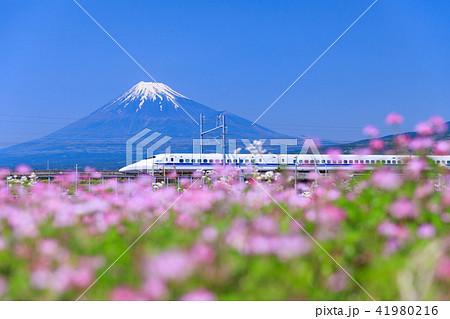 静岡_富士山と新幹線 41980216