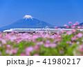 富士山 新幹線 静岡の写真 41980217